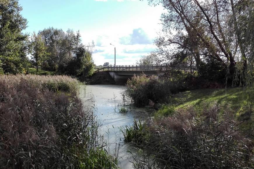 Most narzece Mały Brok