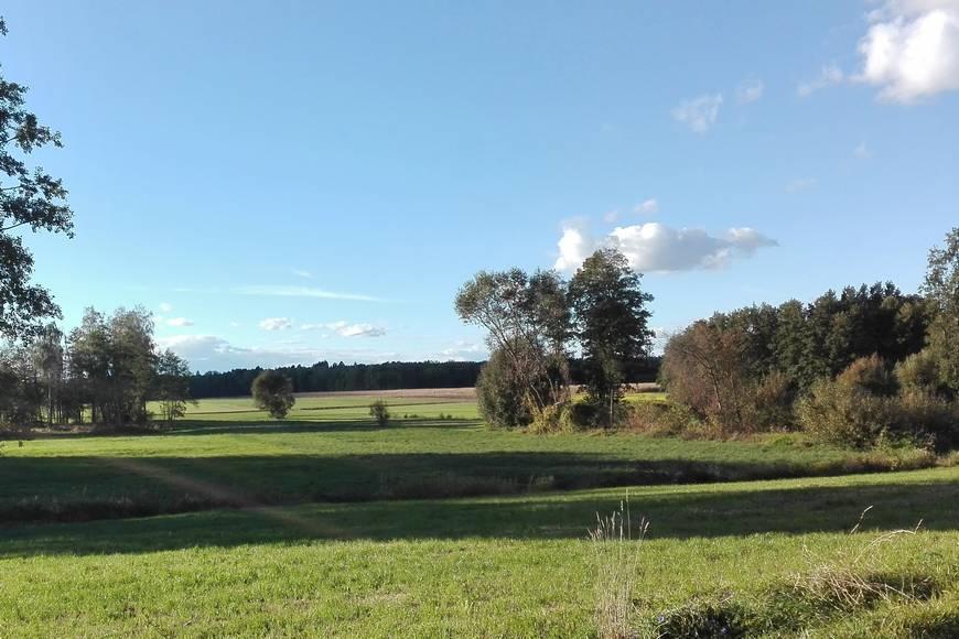 Okolice miejscowości Przeździecko Lenarty
