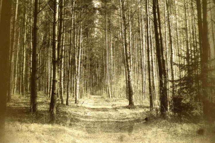 Wojna we wspomnieniach mieszkańców Ostrowi Mazowieckiej i okolic